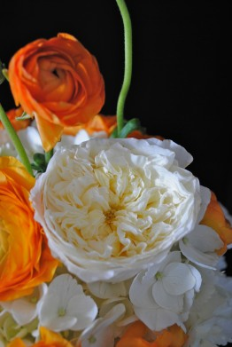 mason jar centerpiece, white garden rose, orange ranunculus
